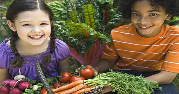 Authors cast doubt on whether lots of fruit is good for children